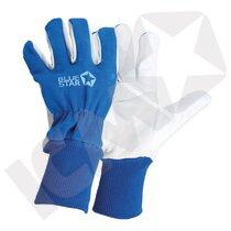 BlueStar Special Tech